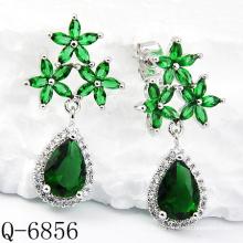 Neueste Stile Ohrringe 925 Silber Schmuck (Q-6856)