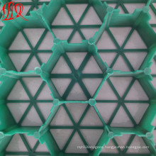 Grass Gravel Plastic Grass Paver Grid Manufacure