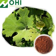 Macleaya Cordata Extract Powder