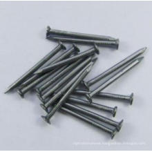 Hot Sale Widely Used Best Price Iron Common Nail