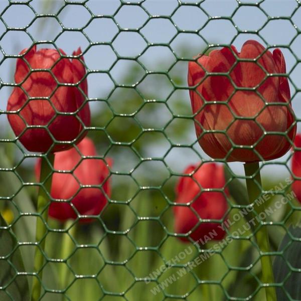 Grün PVC beschichtet Hexagonal Drahtgeflecht China Hersteller