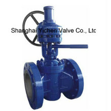 ANSI Lifting Flanged Plug Valve