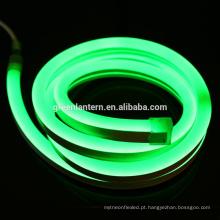 a tira do plutônio conduziu a luz de néon RGB 220V 2835 impermeável