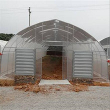 Hot Sale Agriculture Plastic Film Greenhouse