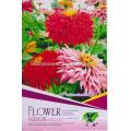 FL01 2018 nova rosa sementes de flores diferentes tipos de sementes de flores para venda