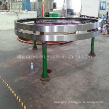 Zys Professional Chinese Ringing Bearing Ring 012.30.710