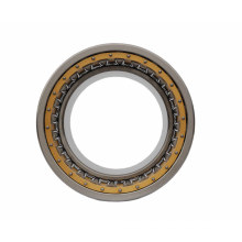 Single and Double Row Cylindrical Roller Bearing