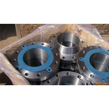 DN250 Forging Galvanized Steel Flange