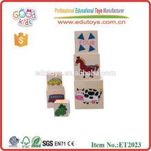 6-en-1 número de juegos educativos de madera contrachapada bloque de bloqueo de cubo de juguetes para niños DIY