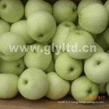 Nouvelle récolte Fresh Golden Apple Grade a et B