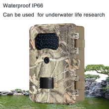 Onderwater Plant Research Trail Camera