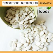 Compre sementes de abóbora verde de alta qualidade, nova safra