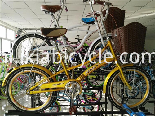 Classic Style Single Speed City Bicycle