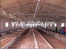 economical chicken farm steel structure for sale