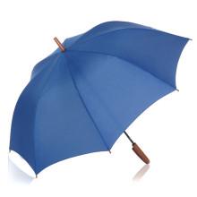Auto Open cor pura Handle Straight Umbrella (BD-33)