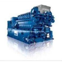 Vereinigen Sie Energie-Biogas-Gas-Natur-Gasgenerator (24KW-1200KW)