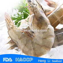 HL002 Frozen best price vannamei shrimp