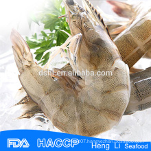HL002 shrimp exporters fozen shrimp