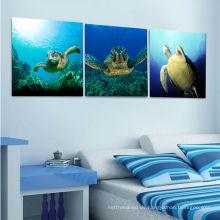 Schildkröten Bild Leinwand Kunst für Kinder