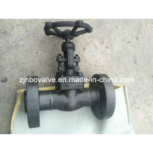 API Forged High Pressure Globe Valve (J41H-1500LB)