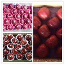 Новая обрезка свежего китайского яблока Хуаниу
