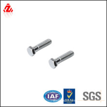 China supplier sus 304 bolt