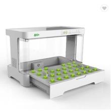 indoor Smart garden hydroponic