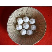 Новый урожай Нормальный белый чеснок Китайский поставщик