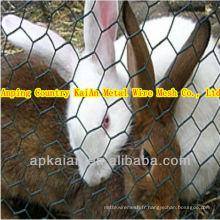 Maillage de ferme de lapin