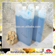Small Ice Chest for frozen food