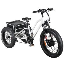 48V500W Electric Tricycle Big Loading E Bike