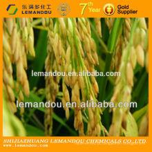 Bactéricídeo de arroz branco ropy e suspensão fluida carbendazim WP