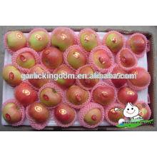 Новый урожай красного гала / горячего красного красного яблока / гала-яблока