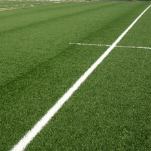 50 mm Fake Lawn For Football