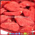 Economic & cheapest goji price gnc de goji goji berry with low price