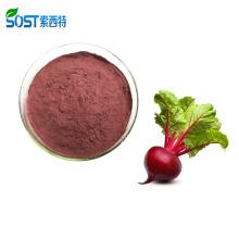 High Quality Free Sample Red Beetroot Juice Powder