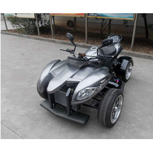 250cc ATV Quad Bikes en venta