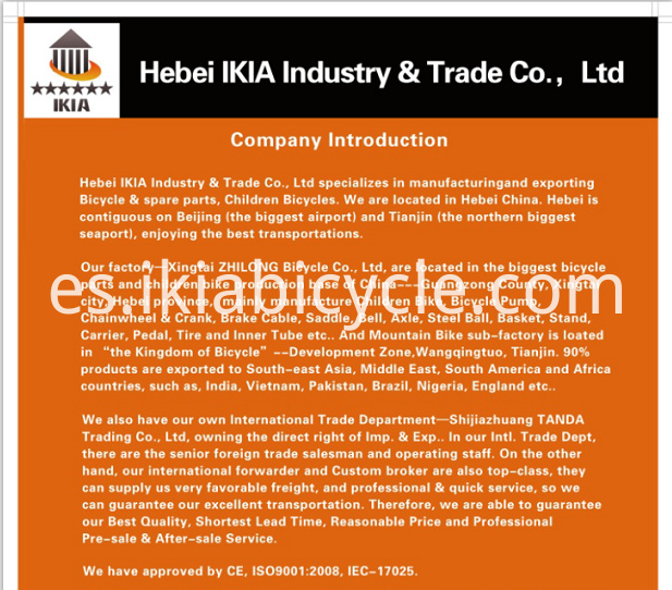 bike company profile