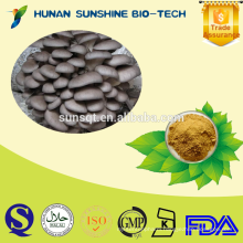 100% Natural Oyster mushroom extract 10%-50% Beta D Glucan