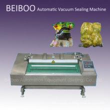 Автоматическая непрерывная вакуумная упаковочная машина (DZ1000)