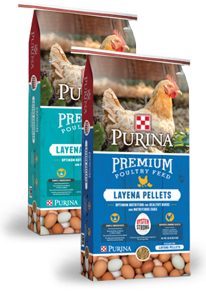 Alimentos para Aves Hen Feeds Packaging Bag