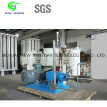 Cryogenic Liquid Pump LNG Pump for LNG Vaporizing Station for Packaging