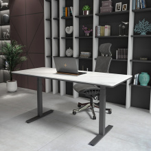 Dual Motor Computer Desk Electric Standing Desk