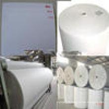 Tapis en polyester pour membrane bitume