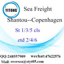 Shantou port LCL củng cố đến Copenhagen