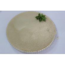 Composto 60% (Aminoácido com origem vegetal de cloreto)