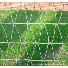 Strong and Flexibility Galvanized Steel Horse Fence
