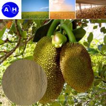 Aminoácidos de la fuente de la planta libres de Chloridion Aminoácidos orgánicos puros