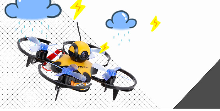 Brushless Racing Drone