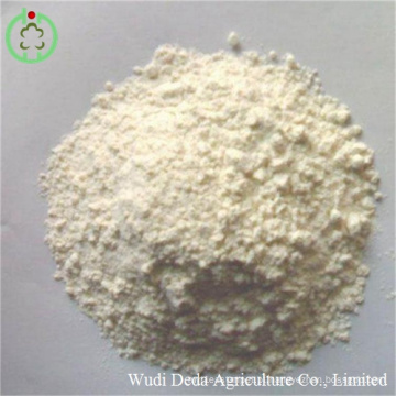 Arroz de farinha de glúten arroz Arroz de refeição de proteína